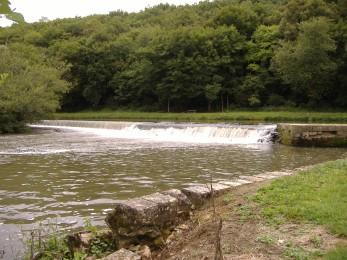 Bord de rivière à Mailly-le-Château